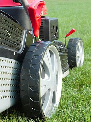 lawn maintenance business